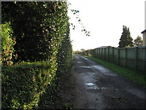 SJ6670 : Driveway entrance to New Hall Farm by Dr Duncan Pepper
