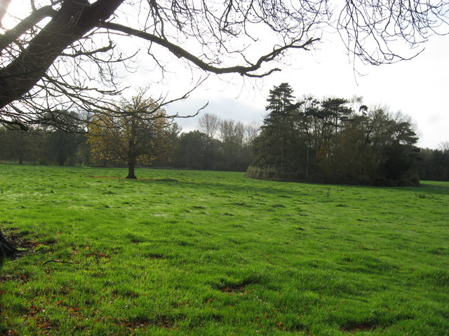Grazing pasture adjacent to Bostock Hall