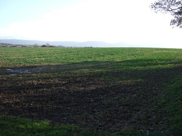 Farmland near Newby Grange