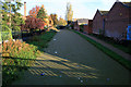 SK4833 : Azolla covers the Erewash Canal (again) by David Lally