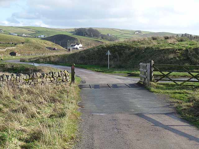 Cattle grid in upper Teesdale