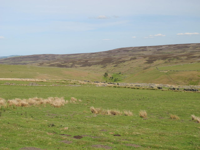 Rough pastures south of Belmount (2)