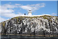 NU2135 : Cliffs below the lighthouse, Inner Farne by Nigel Chadwick