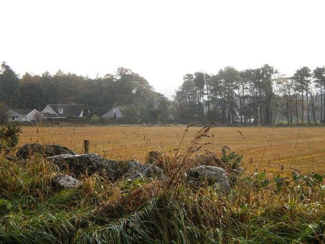 Fields west of Milltimber