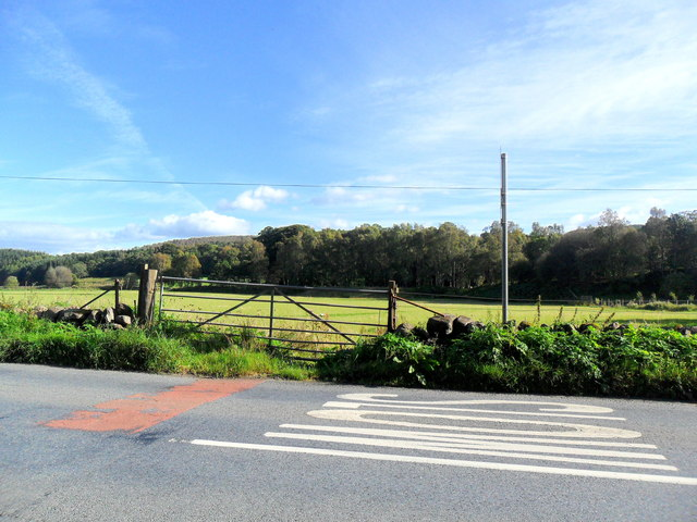 Field gate, Grandtully