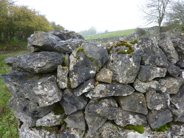 Dry stone wall, Bagshaw Dale