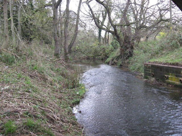 Ash Brook looking downstream
