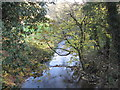 SJ6363 : Ash Brook downstream from Darnhall Bridge by Dr Duncan Pepper