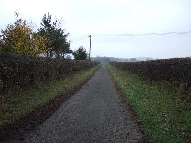 Track to Morton Grange (bridleway)