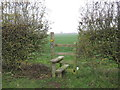 SJ6863 : Stile & Footpath to Stove Room Wood by Dr Duncan Pepper