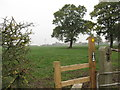 SJ6863 : Stile & Footpath at Stove Room Wood by Dr Duncan Pepper