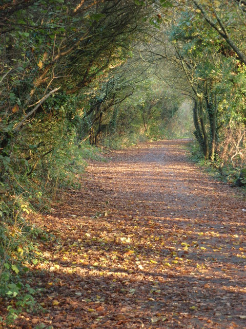 Cycle Path nr Kenfig Hill