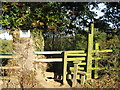 SJ6762 : Stile beside an ancient Oak tree by Dr Duncan Pepper