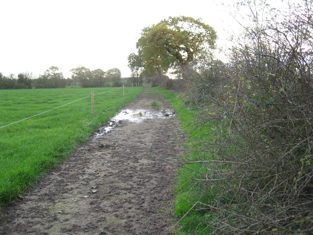 Track of old Roman Road looking South to Park Hall Farm