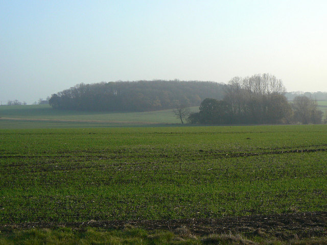 Cropwell Wolds
