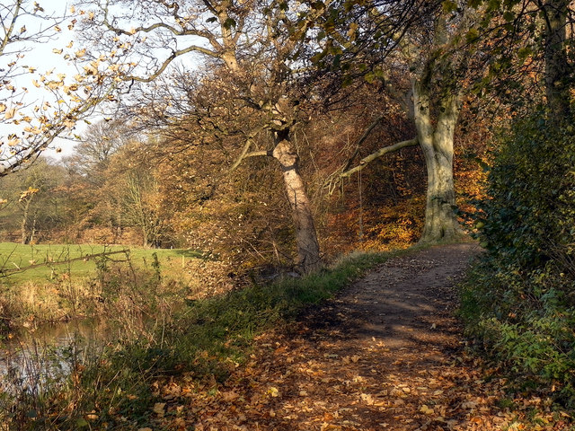Path Along The River Tame