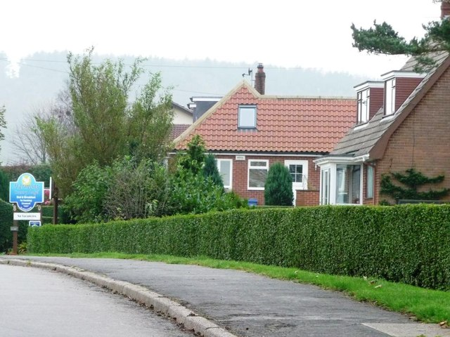 Limestone Road, on the edge of Burniston