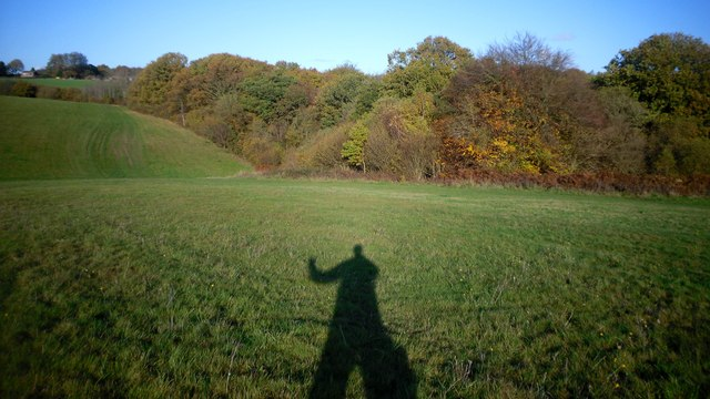 Shadow on the Common