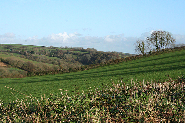 Yealmpton: towards Allercombe Wood
