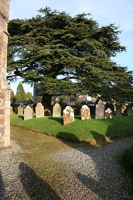 South Brent: St Petroc's churchyard
