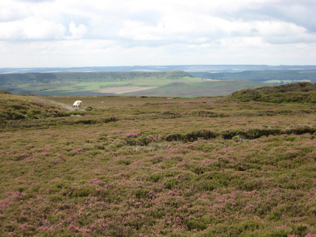 Rudland Rigg summit