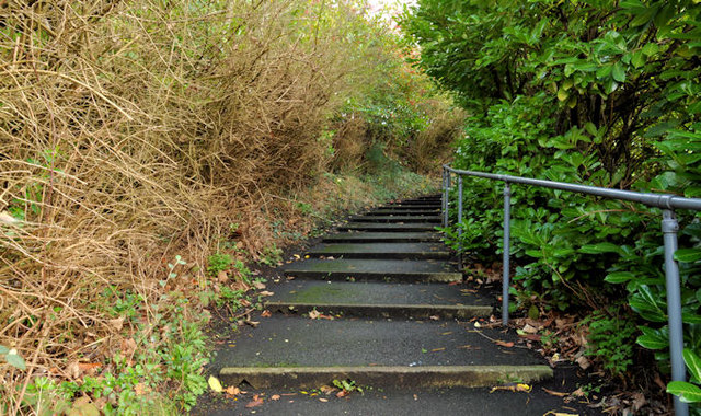 Steps, Belvoir, Belfast