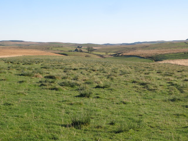 Rough pastures north of Low Tipalt