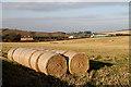 NT5870 : Farmland at Law Knowes : Week 46