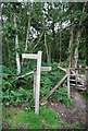 SU7822 : Sussex Border Path signpost by Nigel Chadwick