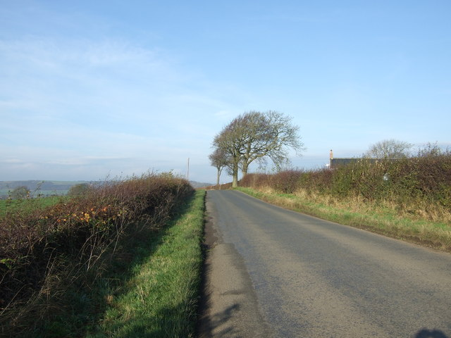 Lane towards Paradise