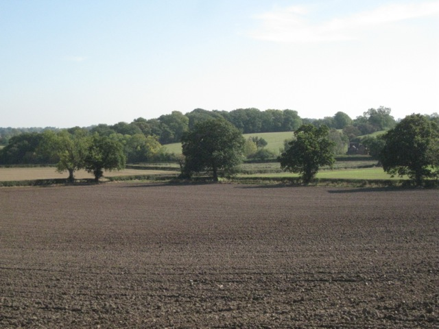 Fields north of Hazelwood Green