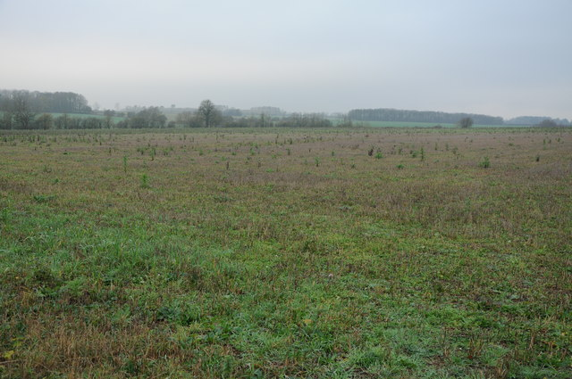 Farmland on a dull day