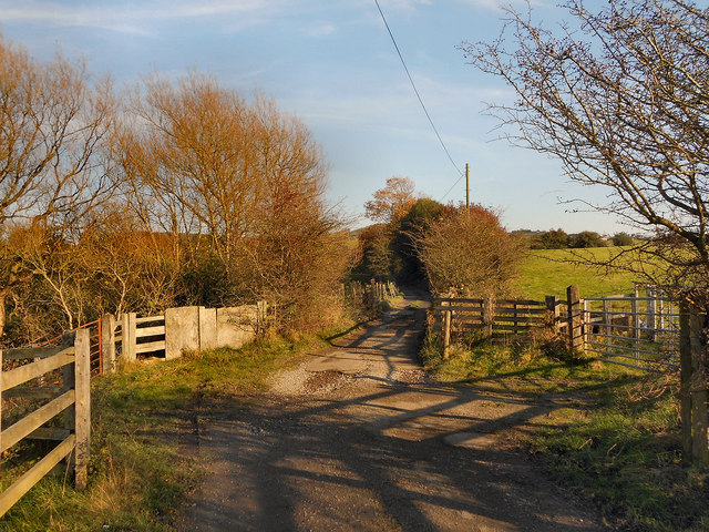 Track Towards Woodside