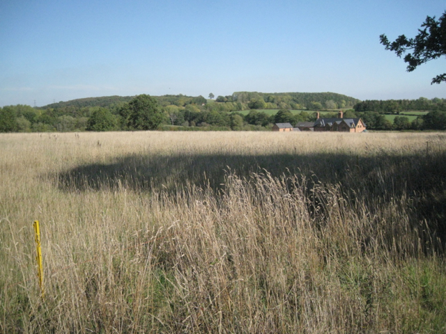 Field edge southwest of Holly Bank Farm