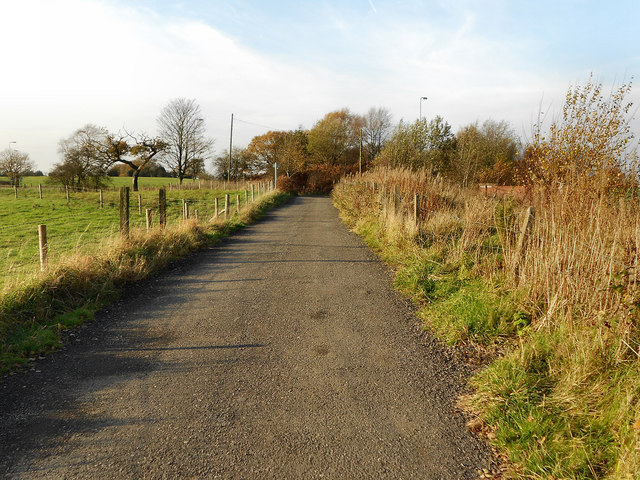 Track From Great Wood
