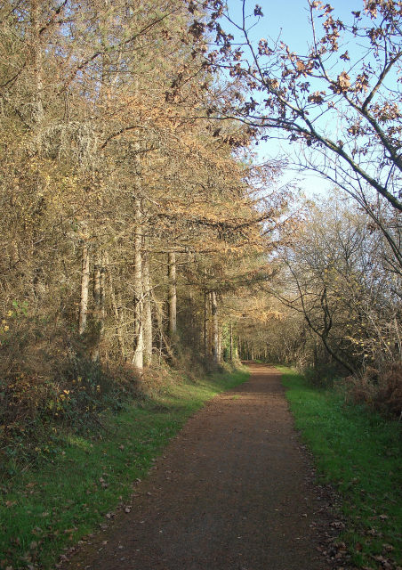National Cycle Route 4 passing through Cwm Ffos in late autumn