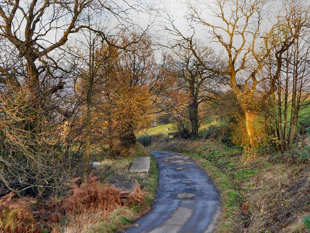 Boarfold Lane