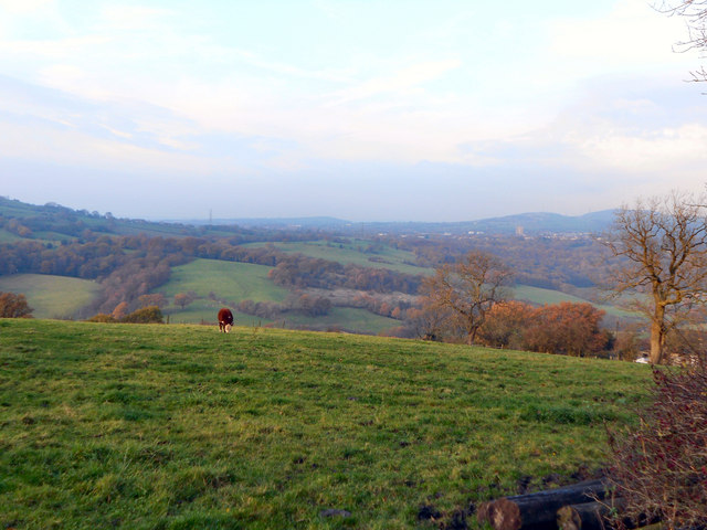View from Boarfold Lane (3)