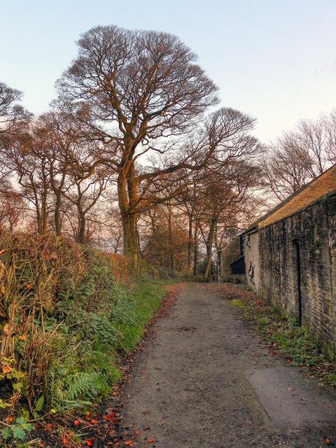 Path Behind Mottram Old Hall
