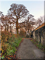 SJ9996 : Path Behind Mottram Old Hall by David Dixon