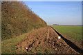 TL5861 : Cleared strip by a winter wheat field by Hugh Venables