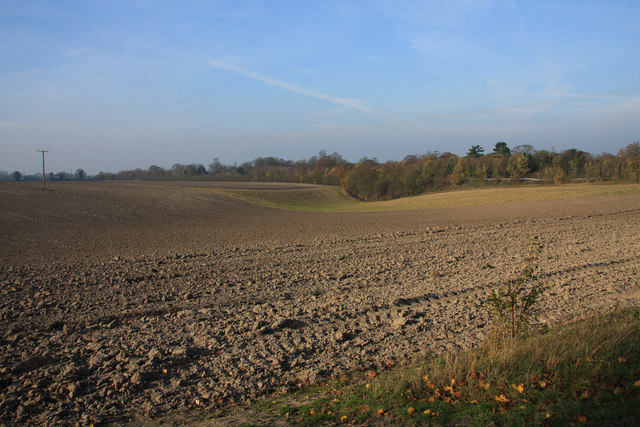 Minor dry valley near Swaffham Prior