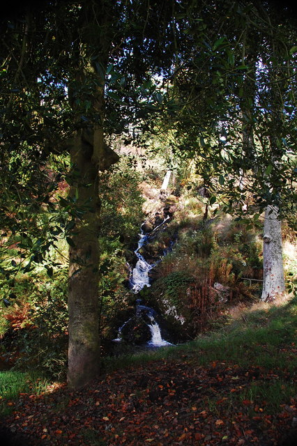 Waterfall and woodland