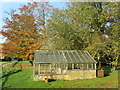 TF9336 : Greenhouse in the Grounds of Walsingham Abbey : Week 46