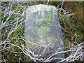SK2192 : Inscribed Stone in Holling Dale by Jonathan Clitheroe