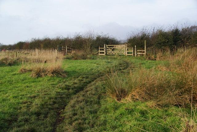 Path to Walker Fold