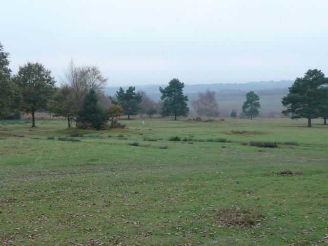 View over Ashdown Forest
