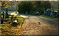 TQ3267 : Queen's Road Cemetery, Selhurst : Week 47