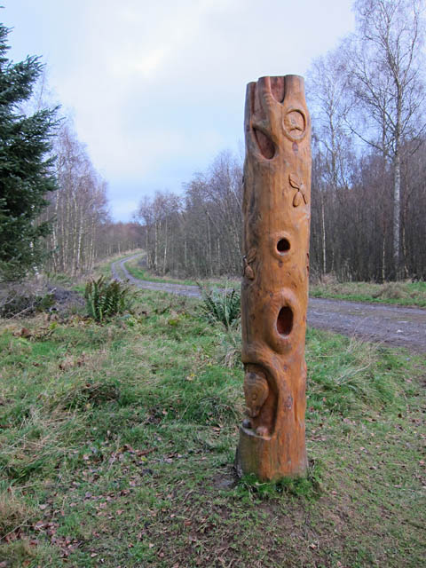 Carving by the track