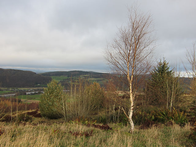 View from Moredun Top